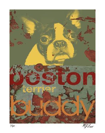 Boston Buddy