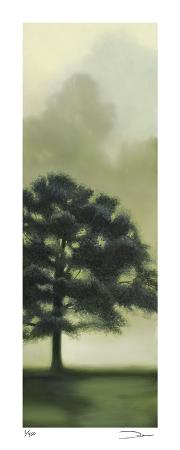 Trees in the Mist II