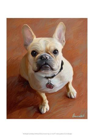 Sophie French Bulldog