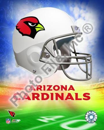 2009 Arizona Cardinals Team Logo