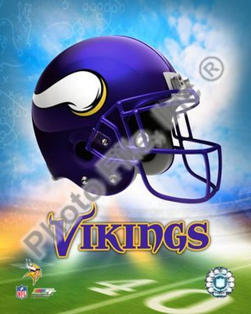 2009 Minnesota Vikings
