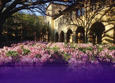 Louisiana State University-Himes Hall