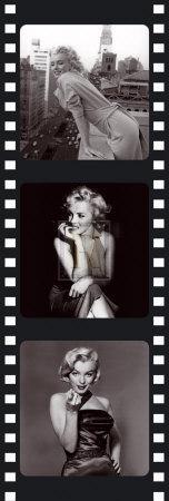 Film Reel III