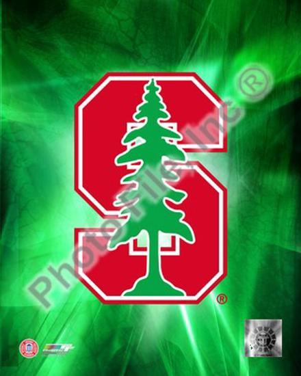 2009 Stanford University Team Logo