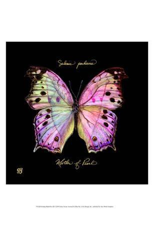 Striking Butterfly III