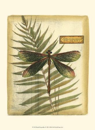 Royal Dragonflies IV