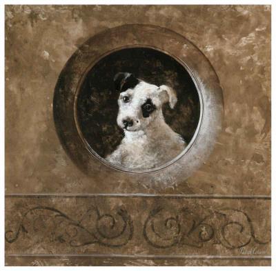 Millo the Dog