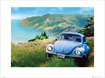 VW: California Bug