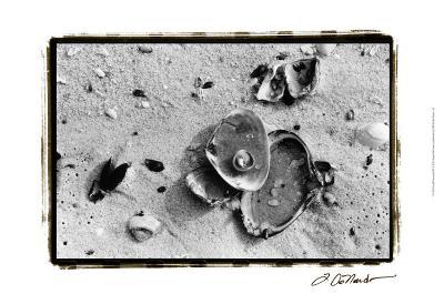Sand Treasures III