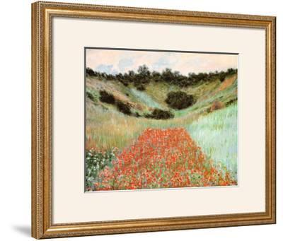 Poppy Field In A Hollow
