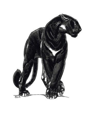 Panther III