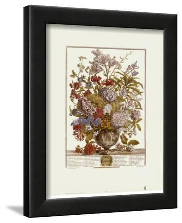 Twelve Months of Flowers, 1730, July
