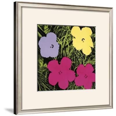 Flowers, c.1970 (1 Purple, c.1 Yellow, 2 Pink)