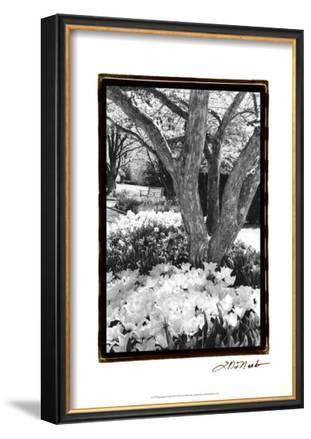 Springtime Garden VI