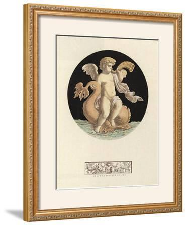 Cherub on Dolphin with Trumpet I