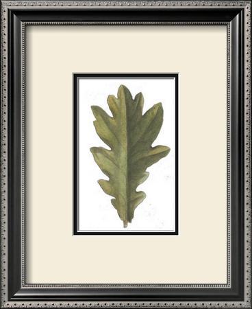 Vintage Leaf IV