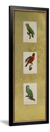 Parrot Panel I