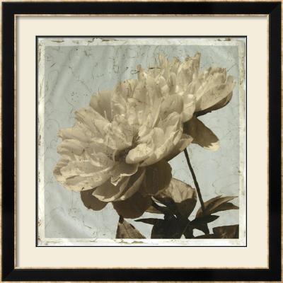 Antiqued Floral and Sky I