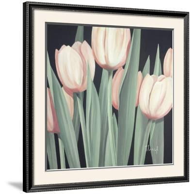 Tulips Harmony II