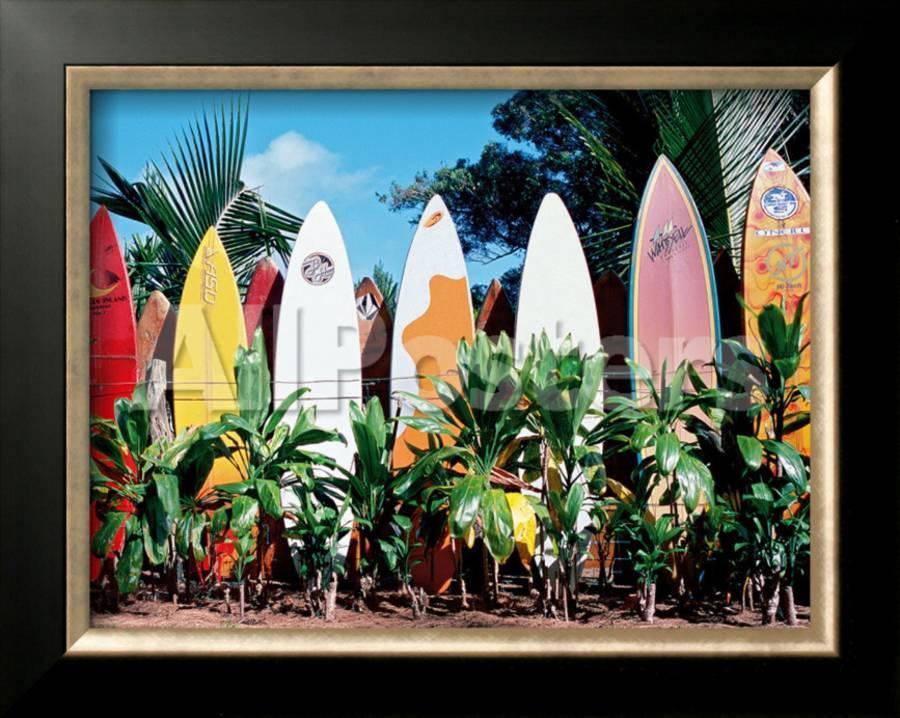Old Surfboards Never Die Framed Giclee Print By Bernard Fickert At