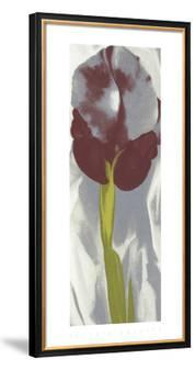 Dark Iris I, c.1927