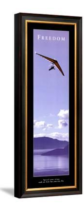 Freedom: Hang Glider