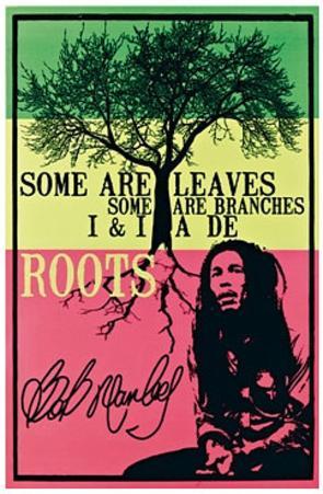 Bob Marley - De Roots