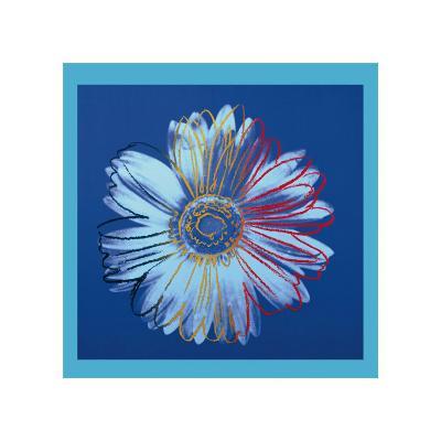 Daisy, c.1982 (Blue on Blue)