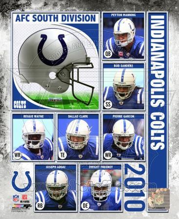 2010 Indianapolis Colts Team Composite