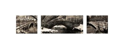 Central Park Bridges (tryptych)