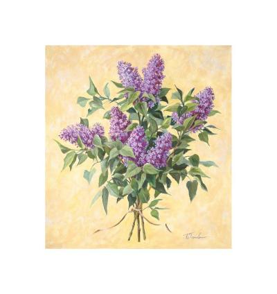 Lilac Season II