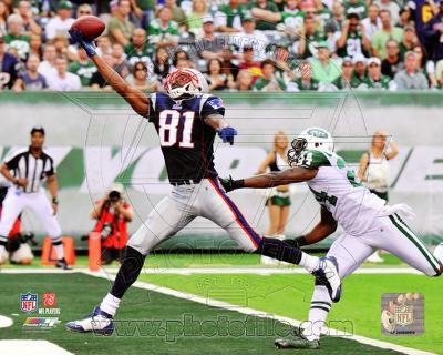 Randy Moss 2010 Action