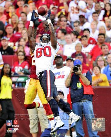 Andre Johnson 2010 Action