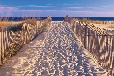 Beach - Josef Sohn