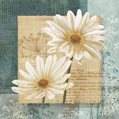 Daisy Field I