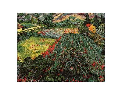 Field of Poppies, Saint-Remy, c.1889