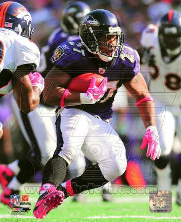 Ray Rice 2010 Action