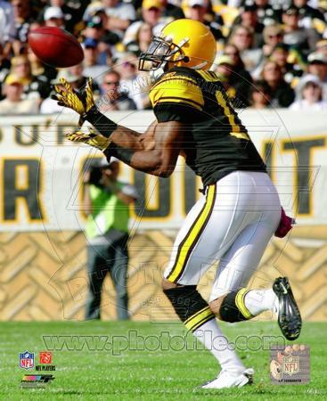 Mike Wallace 2010 Action