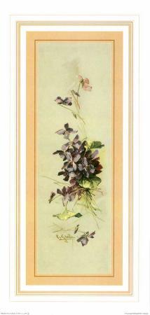 Bouquets II
