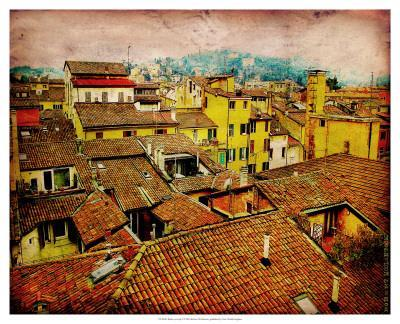 Bird's Eye Italy I