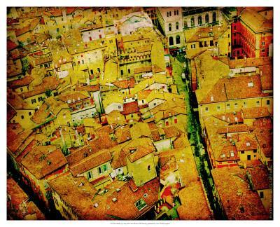Bird's Eye Italy III