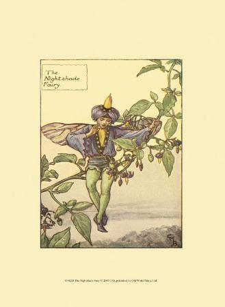 The Nightshade Fairy