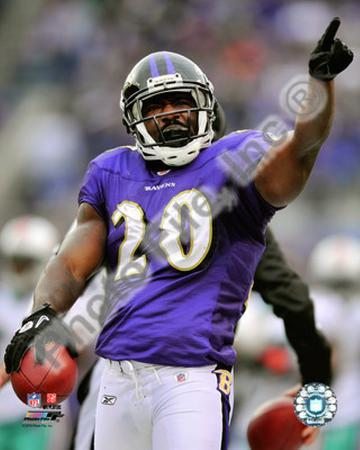 Ed Reed 2010 Action