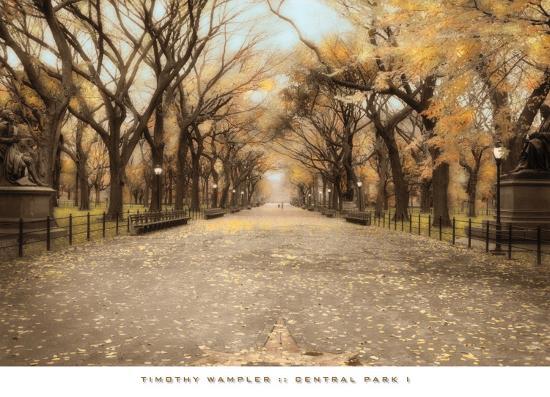 Central Park I Prints By Tim Wampler At Allposters Com