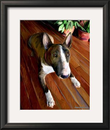 Bull Terrier Down