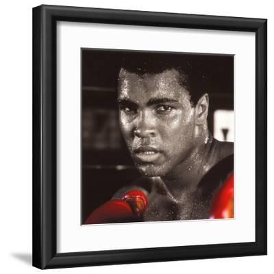 Muhammad Ali: Gloves