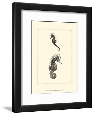 Sepia Seahorse