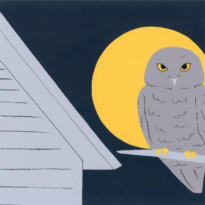 Baby Owl II