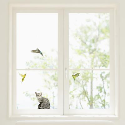 Budgerigars and Cat Window Decal Sticker