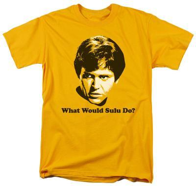 Star Trek-What Would Sulu Do